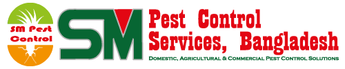 SM Pest Control Services in Bangladesh