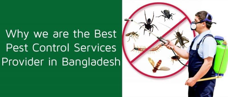Best Pest Control Services