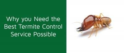 Best Termite Control Service